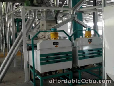1st picture of How to Reduce Grain Processing Equipment Power Cost ? For Sale in Cebu, Philippines