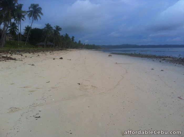 4th picture of Eagles Beach Resort Lot For Sale For Sale in Cebu, Philippines