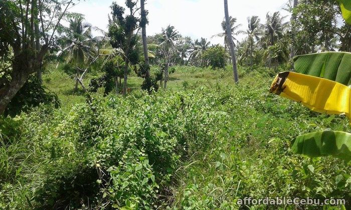 2nd picture of Lot Only For Sale Eagles Vantage In Naga San Fernando Langtad For Sale in Cebu, Philippines
