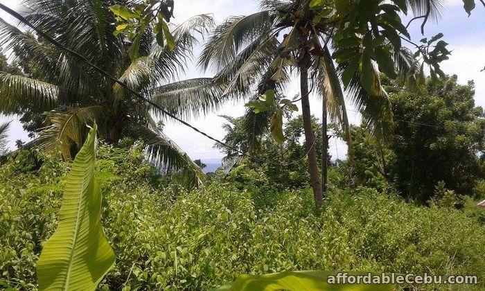 5th picture of Lot Only For Sale Eagles Vantage In Naga San Fernando Langtad For Sale in Cebu, Philippines