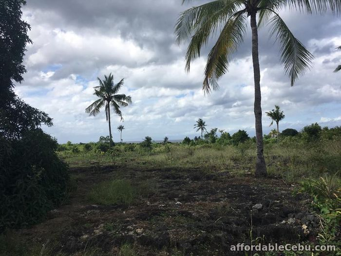 4th picture of Affordable Lot for Sale along Whitebeach Moalboal area For Sale in Cebu, Philippines