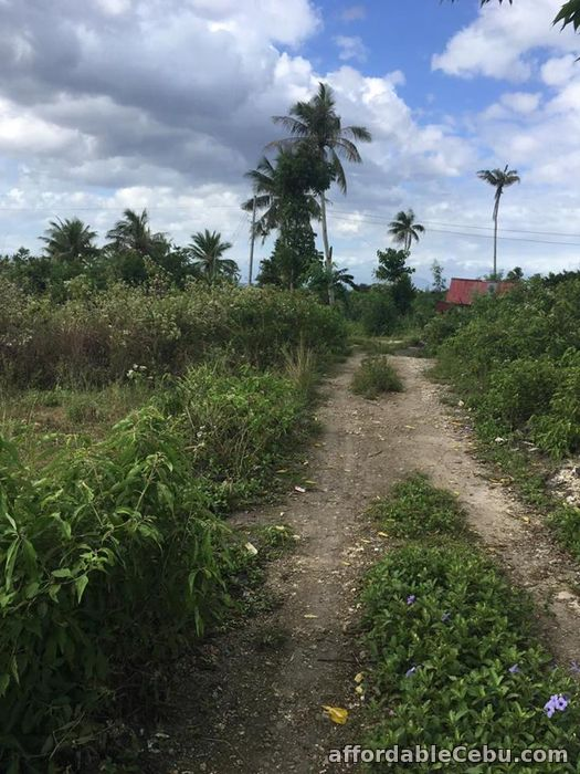 2nd picture of Affordable Lot for Sale along Whitebeach Moalboal area For Sale in Cebu, Philippines
