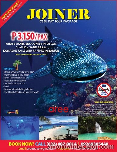 1st picture of CEBU JOINER TOUR PACKAGE-option Y Offer in Cebu, Philippines