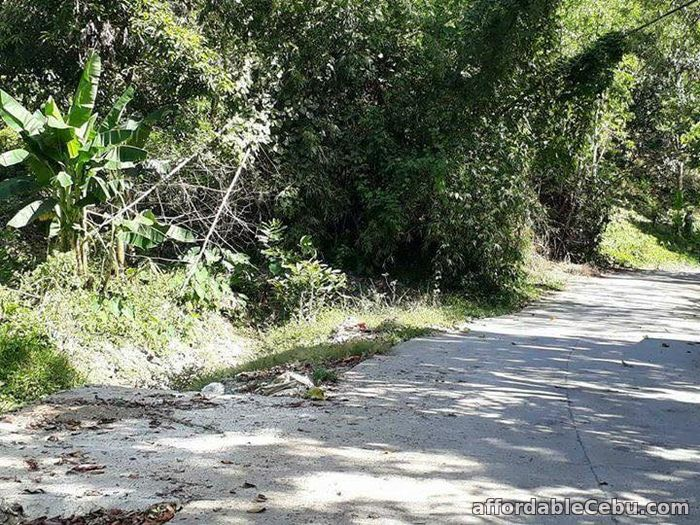4th picture of CHEAP LOT AT DANAO - only P1,917/month or P2,300/sqm For Sale in Cebu, Philippines