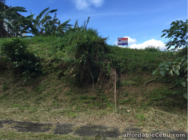 1st picture of AYALA GREENFIELD LOT FOR SALE For Sale in Cebu, Philippines