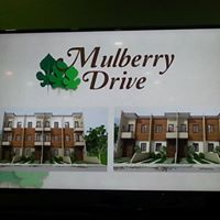 3rd picture of Mulberry Drive Subdivision located in San Jose Talamban, For Sale in Cebu, Philippines