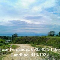 5th picture of PennDave Manor Gate 2 Lot only (5,500 per sqm) Tubod Minglanilla, For Sale in Cebu, Philippines