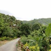 1st picture of Lot only Subdivision Compostela Cebu price  2,800 For Sale in Cebu, Philippines