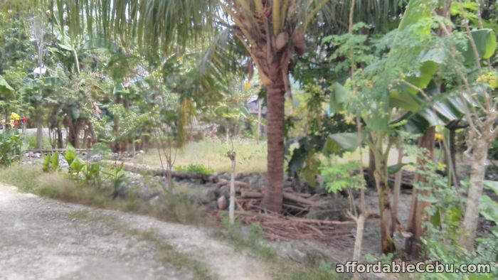 3rd picture of Titled lot in Sansville Subd rush sale.. Basak, Lapu-lapu City For Sale in Cebu, Philippines