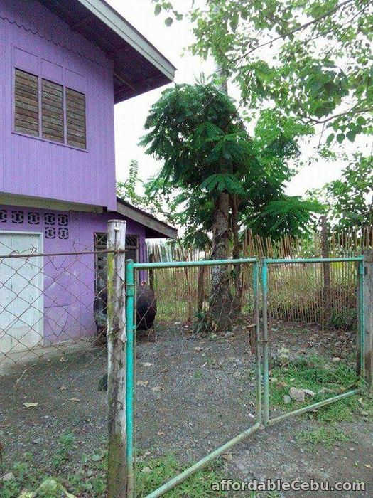 2nd picture of 1.2 M House & Lot For Sale In Palawan For Sale in Cebu, Philippines