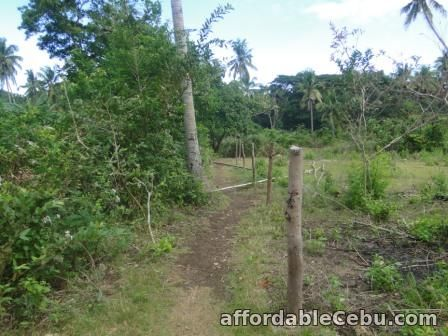1st picture of Town lot Siaton Negros Oriental For Sale in Cebu, Philippines
