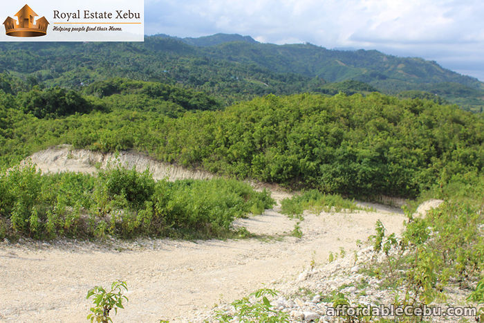5th picture of No need for loan: Lot for sale at Penndave Estate Hills in Compostela For Sale in Cebu, Philippines