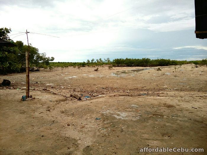1st picture of For Sale 13,300+sq.m Beach Lot in Olango, Cebu For Sale in Cebu, Philippines