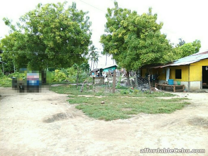5th picture of For Sale 13,300+sq.m Beach Lot in Olango, Cebu For Sale in Cebu, Philippines