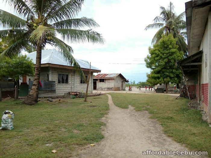3rd picture of For Sale 13,300+sq.m Beach Lot in Olango, Cebu For Sale in Cebu, Philippines