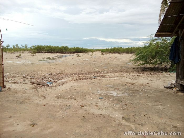 2nd picture of For Sale 13,300+sq.m Beach Lot in Olango, Cebu For Sale in Cebu, Philippines