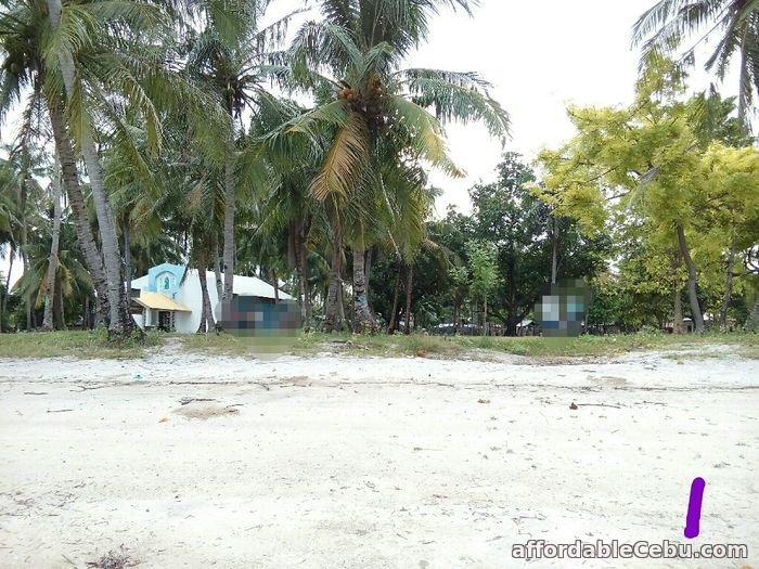 1st picture of 9400sqm Beach Lot with fully furnished concrete house in Olango, Cebu For Sale! For Sale in Cebu, Philippines