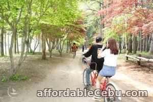 2nd picture of 4 DAYS 3 NIGHTS KOREA TOUR PACKAGE For Sale or Swap in Cebu, Philippines