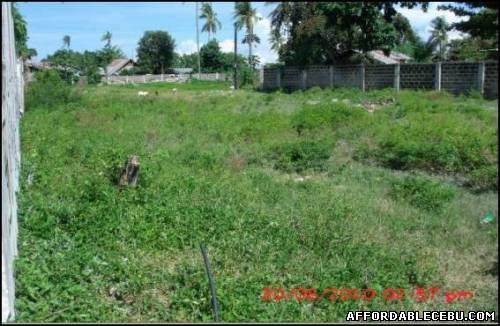 3rd picture of Lot for Sale in Talisay, Cebu - 7,813sqm area For Sale in Cebu, Philippines