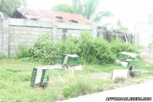 3rd picture of TITLED SUBDIVISION LOT IN BASAK LAPU-LAPU CITY For Sale in Cebu, Philippines