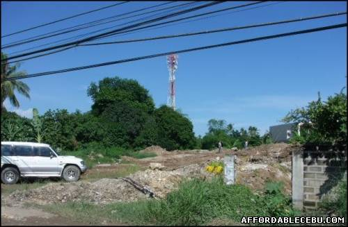 2nd picture of Lot for Sale in Talisay, Cebu - 7,813sqm area For Sale in Cebu, Philippines