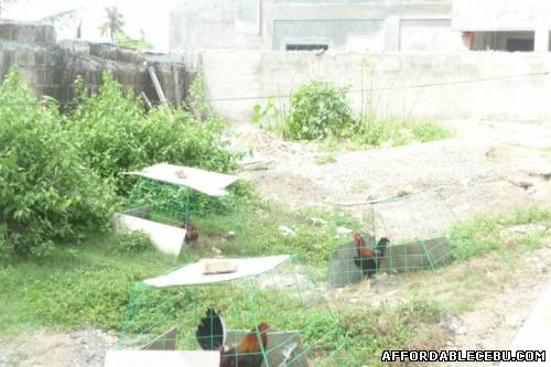 4th picture of TITLED SUBDIVISION LOT IN BASAK LAPU-LAPU CITY For Sale in Cebu, Philippines