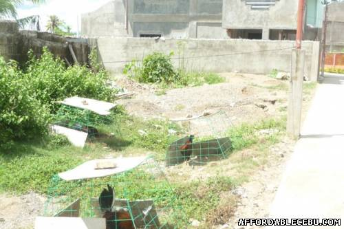 5th picture of TITLED SUBDIVISION LOT IN BASAK LAPU-LAPU CITY For Sale in Cebu, Philippines