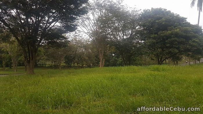 4th picture of FOR SALE: Montecito Lot For Sale in Cebu, Philippines
