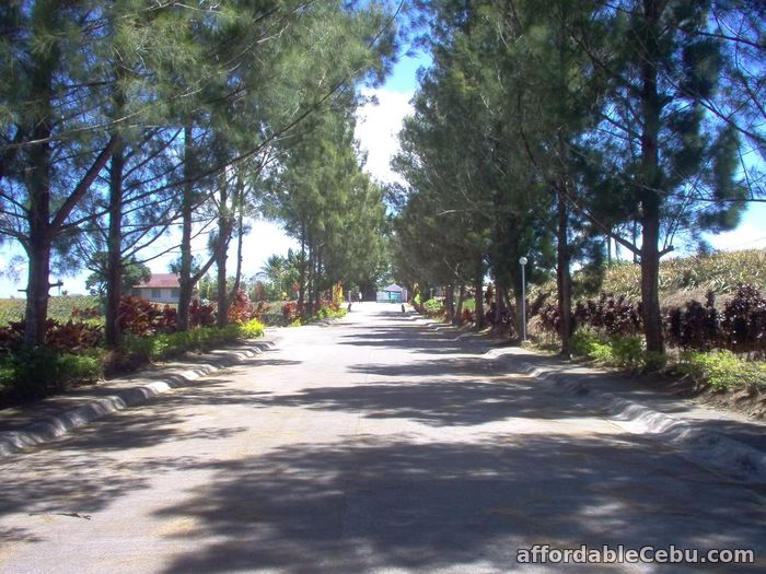 1st picture of FOR SALE: 240sqm lot in Windsor Heights Residential Estate For Sale in Cebu, Philippines