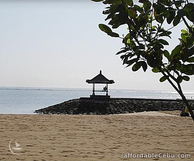 1st picture of 4 days Bali Indonesia Package with hotel tour and meals Offer in Cebu, Philippines