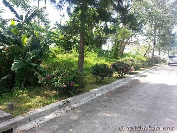 4th picture of FOR SALE: Ponderosa Leisure Farm Village For Sale in Cebu, Philippines