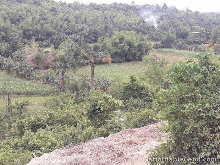 4th picture of Resedential lot for sale in Cosolacion near SM For Sale in Cebu, Philippines