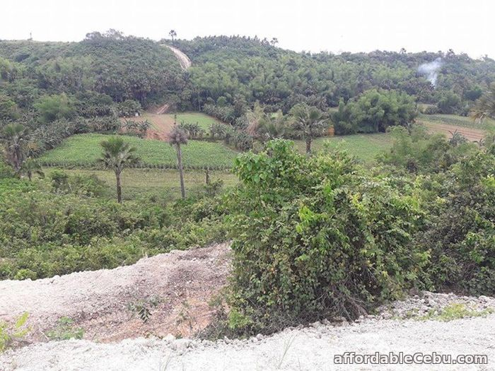 1st picture of Resedential lot for sale in Cosolacion near SM For Sale in Cebu, Philippines