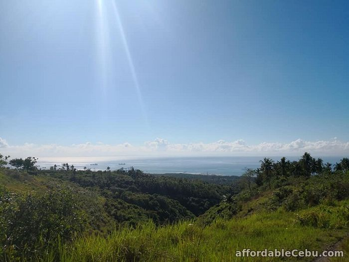 1st picture of Ocean viewing Farm Lots for Sale!!! NAGA For Sale in Cebu, Philippines