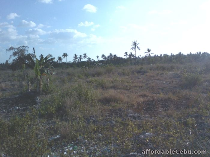 1st picture of Titled lot in Moalboal RUSH SALE BY OWNER For Sale in Cebu, Philippines