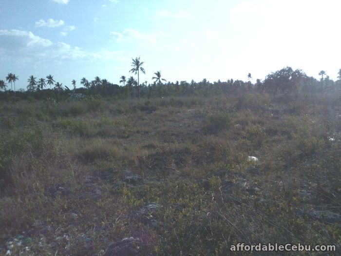 2nd picture of Titled lot in Moalboal RUSH SALE BY OWNER For Sale in Cebu, Philippines