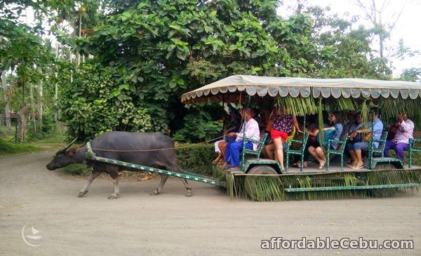 1st picture of Villa Escudero Day Tour Offer in Cebu, Philippines