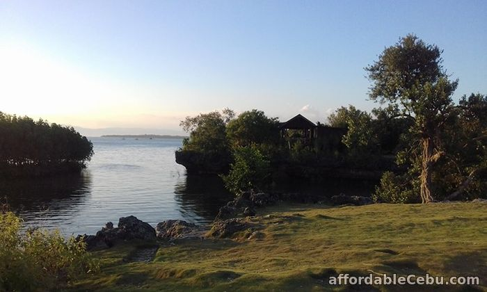 3rd picture of LOT by the Sea only P1,000 per sqM For Sale in Cebu, Philippines