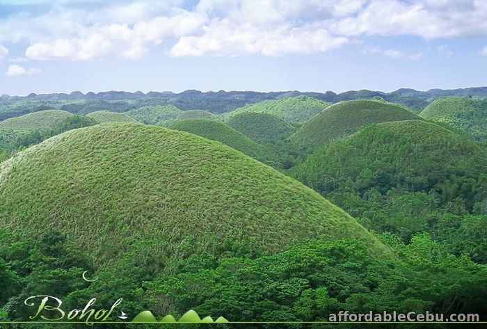 1st picture of 4D3N Bohol Cebu Davao tour Package Offer in Cebu, Philippines