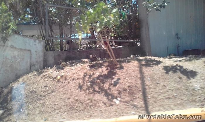 5th picture of Lot for sale Near Airport For Sale in Cebu, Philippines