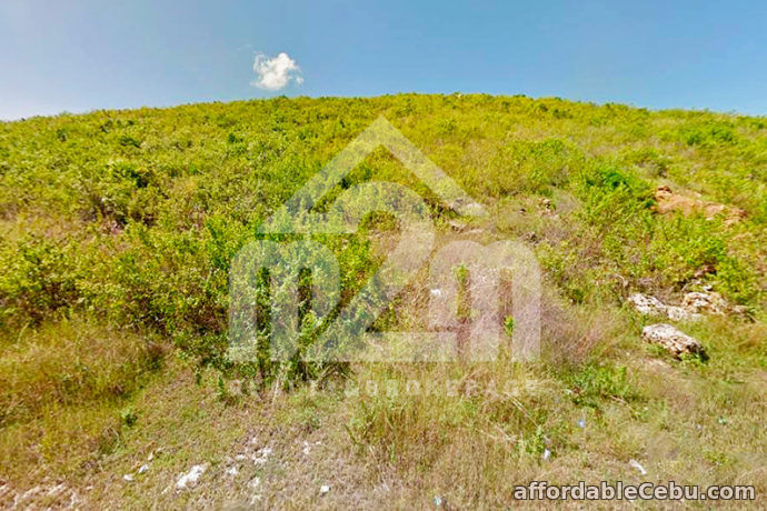 5th picture of Mountain Plains(LOT ONLY) Lupot Sabang, Danao City, Cebu For Sale in Cebu, Philippines