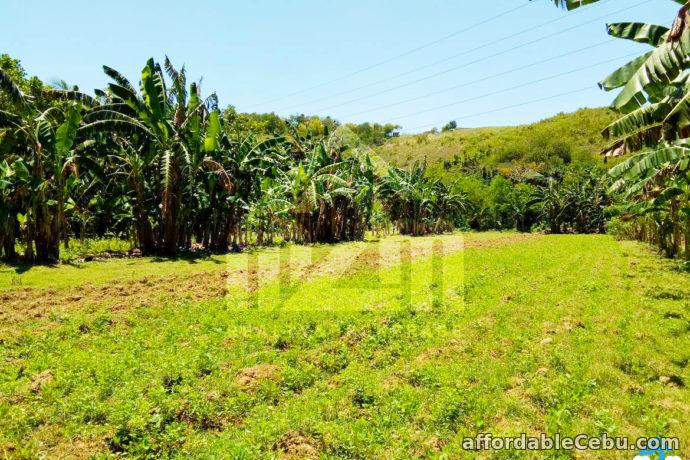 2nd picture of Kardava Hillside Subdivision(LOT ONLY) Tabunoc 2, Maslog, Danano City Cebu For Sale in Cebu, Philippines