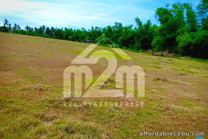 2nd picture of Roseberg Residences(LOT ONLY) Tapilon, Daanbantayan, Cebu For Sale in Cebu, Philippines