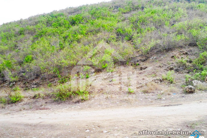 3rd picture of Mountain Plains(LOT ONLY) Lupot Sabang, Danao City, Cebu For Sale in Cebu, Philippines