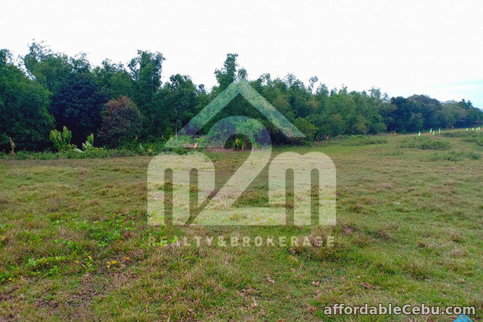 4th picture of Roseberg Residences(LOT ONLY) Tapilon, Daanbantayan, Cebu For Sale in Cebu, Philippines