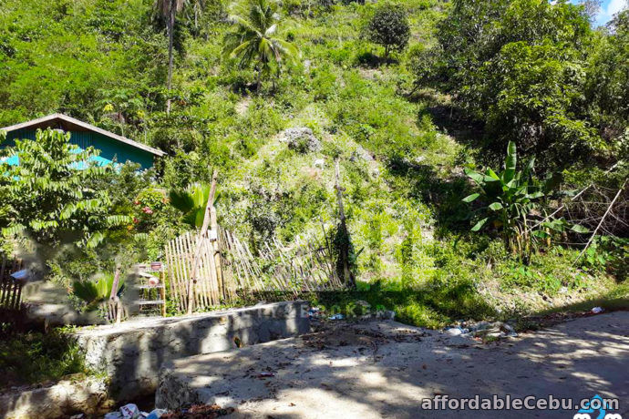 3rd picture of Jonhlino Hills Subdivision(LOT ONLY) Sandayong, Danao City, Cebu For Sale in Cebu, Philippines