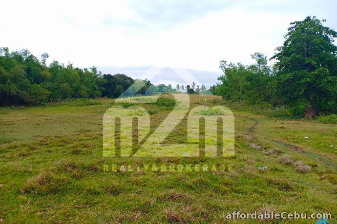 3rd picture of Roseberg Residences(LOT ONLY) Tapilon, Daanbantayan, Cebu For Sale in Cebu, Philippines