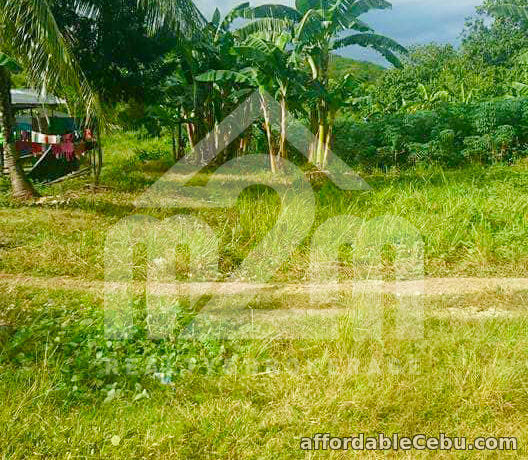 3rd picture of Mount Olivo(LOT ONLY) San Vicente Liloan, Cebu For Sale in Cebu, Philippines