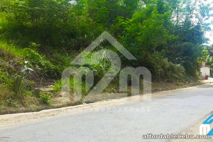 2nd picture of Lot For Sale - Sunflower Valley(LOT ONLY) Bagalnga, Compostela Cebu For Sale in Cebu, Philippines