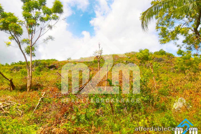 4th picture of Fritz Ville Subdivision(LOT ONLY)Cogon, Compostela, Cebu For Sale in Cebu, Philippines